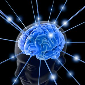 How-Neurotransmitters-Are-Released-in-the-Brain-2